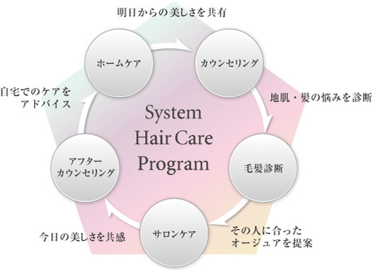 system hair care program